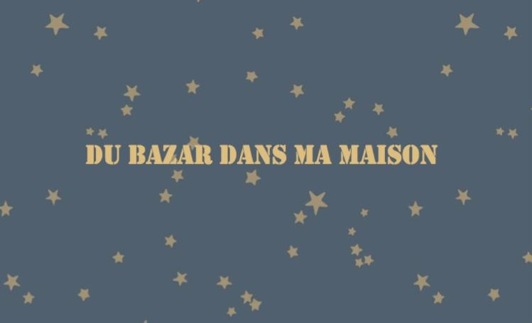 logo du bazar dans ma maison